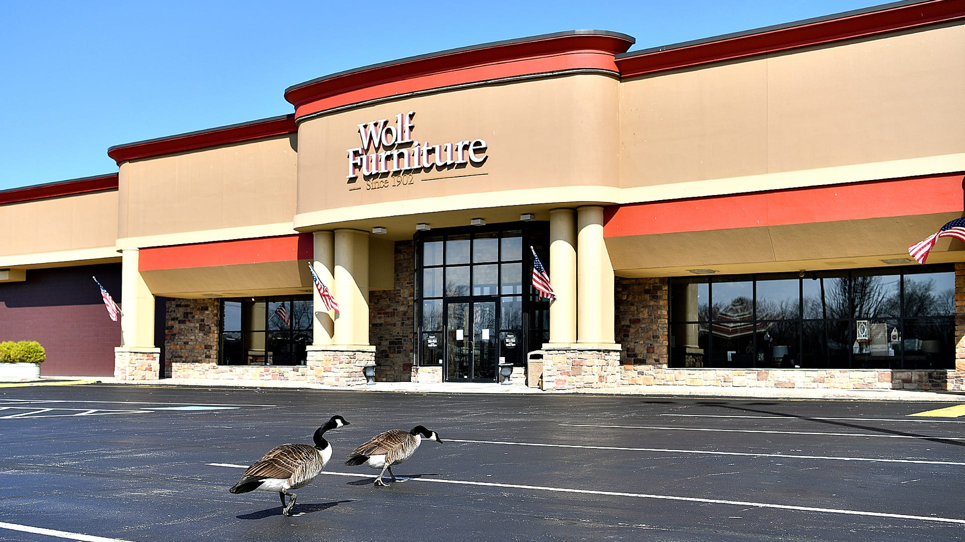 Wolf Furniture stores closing; owner nixes deal due to coronavirus