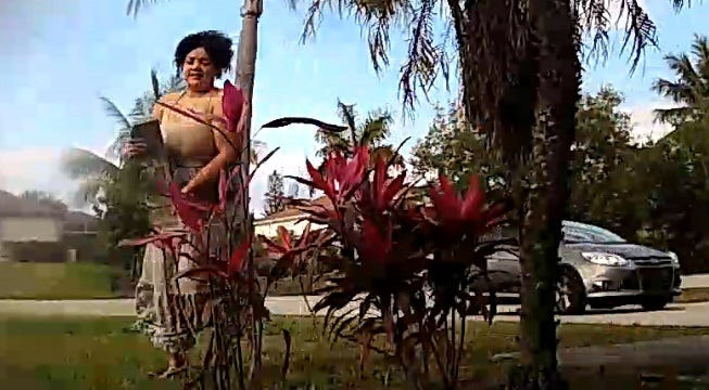 Law enforcement in Lee  County is looking for this woman. She tossed a cement garden border block through a window