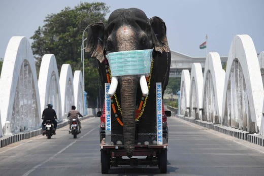 A replica of an elephant with a face mask is driven on trailer pulled by a car to bring  awareness during a one-day Janata (civil) curfew imposed by the government amid concerns over the spread of the COVID-19 novel coronavirus in Chennai on March 22, 2020.