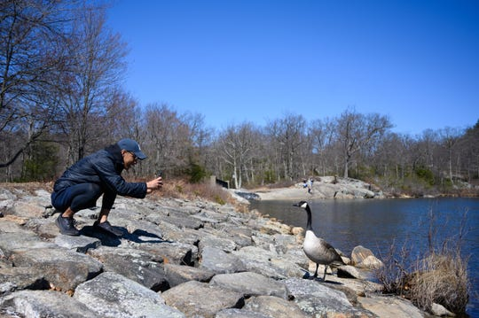 Jayson Deleon from Brooklyn, New York, takes a photo of waterfowl at Pine Meadow Lake at Harriman State Park on March 15, 2020. His trip to Europe with his girlfriend was canceled six hours before they were scheduled to depart due to the coronavirus, so he and some friends drove up to see nature and to get away. New York City is adjusting to life during incremental restrictions due to the COVID-19 coronavirus outbreak worldwide.