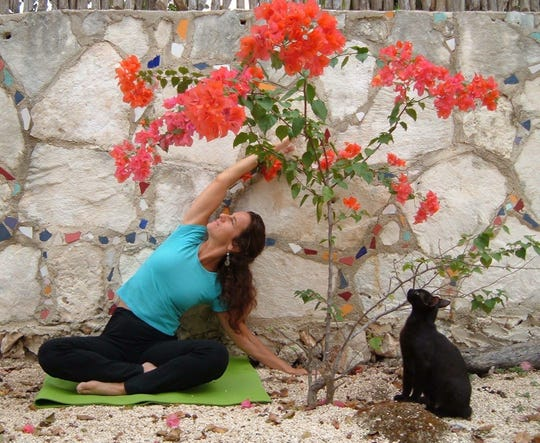 Yoga instructor Stephanie Pappas stretches, while her cat observes the pose.