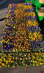 Goffle Brook Farm and Garden Center got a jump on the season earlier than usual this year.