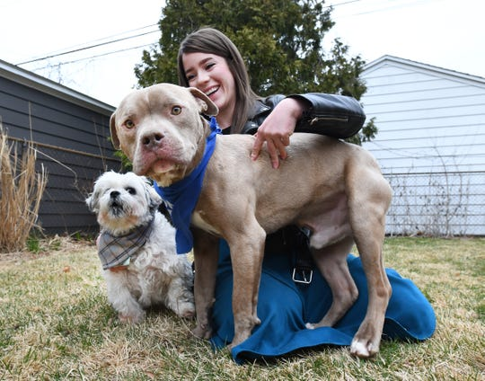 Tiffany Perkins and her foster dog Rhett who takes the spotlight from her dog George Clooney, on left, at her home in Royal Oak, Michigan on March 24, 2020.