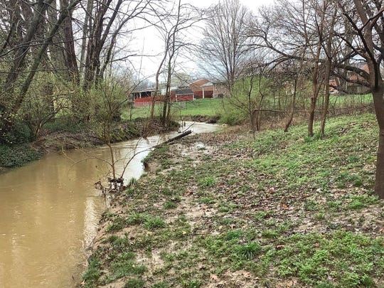 Collegiate ninth-grader Jeremy Ye took a photo of the creek near his home while outside enjoying nature.