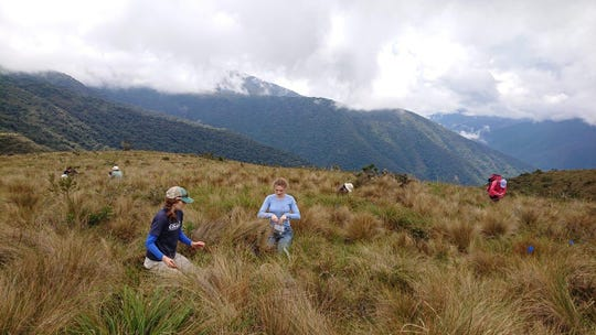 Laura Jessup, left in the foreground, and other scientists gather data during a workshop in Peru before the country's president instituted a mandatory quarantine then locked down the country's borders.