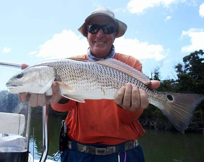 Bob Trento of Naples caught this large red fish. Trento was fishing with Jim Kenney of Marco Island. Trento caught the fish on a shrimp tipped jig south of Marco.
