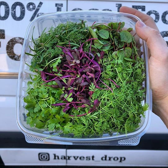 Some of the microgreens available for home delivery