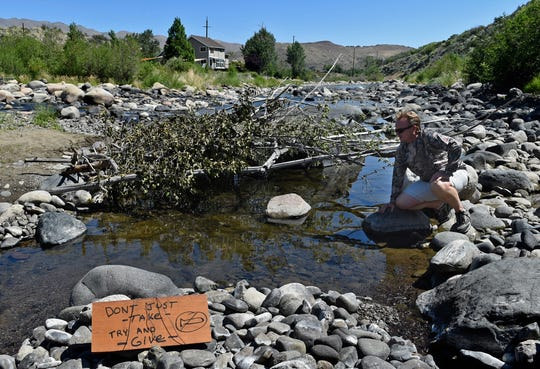 Fishing guide Rob Anderson looks at fish gathered under a shade structure that was constructed by someone hoping to help the fish survive the dry Truckee River on July 6, 2015.