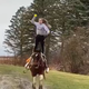 "Alexander sophomore Courtney Schum throws a ball while standing on her horse, Tater, in the team's virtual game of catch video on social media. Schum is known as Courtney Jean ""The Trick Riding Machine."""