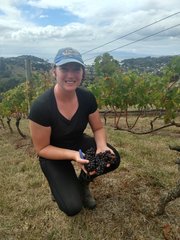 Haylee Oliver holds a handful of grapes at Mudbrick Vineyards on Waiheke Island in New Zealand on Saturday, March 21, 2020.