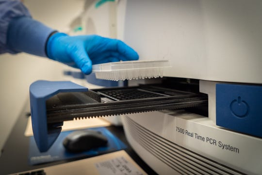Performing COVID-19 testing at Quest Diagnostics laboratory in Chantilly, Virginia.