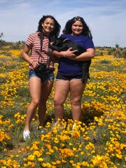Sister Alyssa and Alexandra Colwell enjoyed visiting the poppies Sunday. Their mom said they are making sure to stay six feet apart from others.