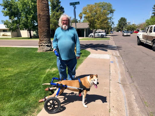 Woody Sisson and the dog Lexi make good time around the block, even though Lexi uses a canine wheelchair because there's something wrong with the nerves in her hind legs.