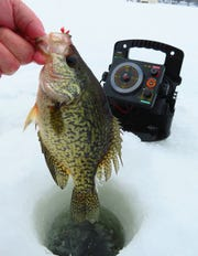 Quite a few fish were caught on the last ice fishing trip of the season.