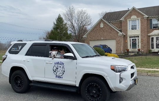 """Cole the Deaf Dog and his """"dad"""" Chris Hannah, the Mennies Elementary School music teacher, take a road trip to connect with students during the school closure due to COVID-19."""