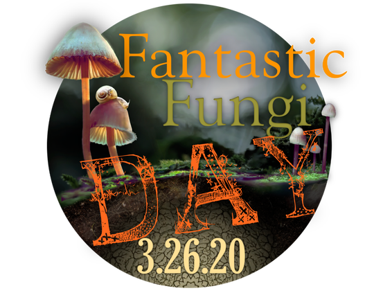 Cinema Detroit will be having virtual screenings of 'Fantastic Fungi' on March 26, 2020 as part of Fantastic Fungi Day. The indie movie theater is closed during the coronavirus pandemic.