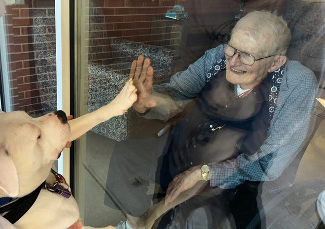 A Vineland Veterans Home resident greets Cole the Deaf Dog, who is remaining outside to comply with visitation restrictions due to the COVID-19 pandemic.