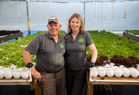 Frans Kox and Kana Telecka are the owners of East Fork Creek Farm in south Fort Myers on Friday, March 27, 2020. The aquaponic farm can grow lettuce all year long thanks to special shades covering the growing areas and lettuce plants bred to withstand heat.