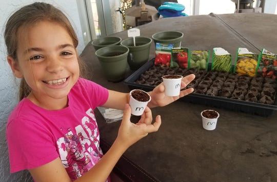 Tosca Grifoni, daughter of Elsa Grifoni and Marco Island Vice-chair Jared Grifoni, uses recycled k-cups to sprout seeds for planting in the family garden on March 24, 2020.