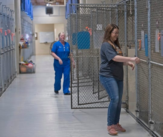 The Santa Rosa County Animal Shelter has empty kennels for the first time in its 25-year history. The shelter staff is using this opportunity to deep-clean the entire facility to make room for more animals once the COVID-19 pandemic is under control.