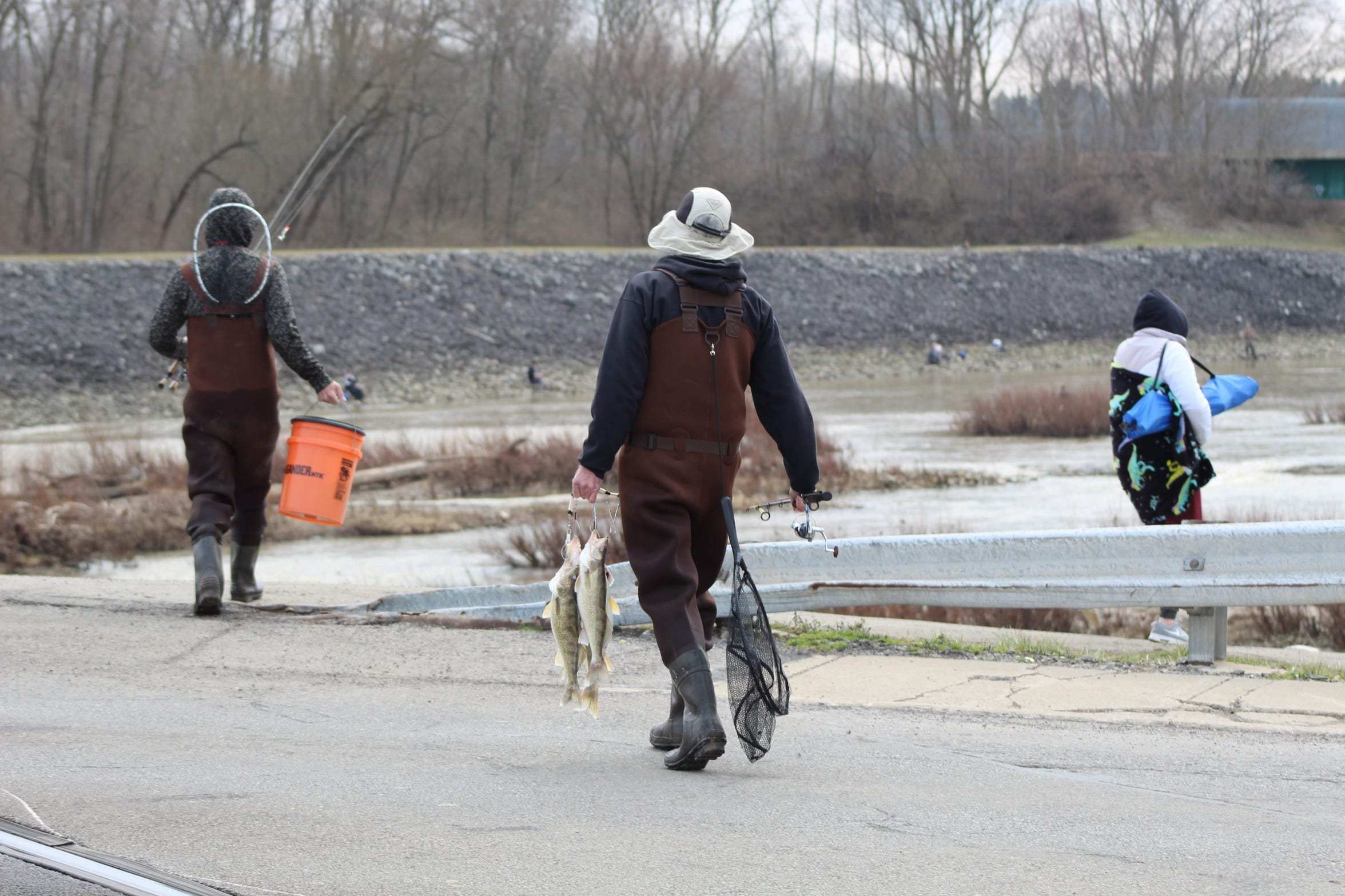 A fishermen carried some of the walleye he caught from the Sandusky River Thursday in Fremont. Dozens of fishermen lined the river's shoreline near the city's downtown area in hopes of catching fish during the river's annual spring walleye run.
