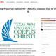 A screenshot, taken on March 30, 2020, of a petition urging Texas A&M University-Corpus Christi to give students a pass/fail option. Students say they've struggled with the transition to online classes.