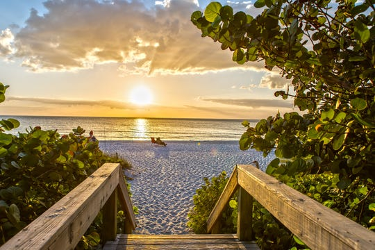 From the Gulf of Mexico to the smallest pond in your backyard, the health of Collier County's water is imperative to the health and well-being of its residents, wildlife and the economy.