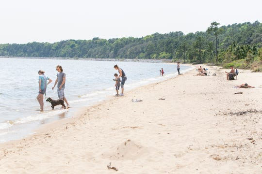 A handful of people enjoy the sun while social distancing at the Bay Bluffs Park in Pensacola on Monday.