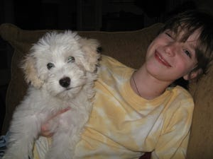 Sawyer and Widdle as a puppy.
