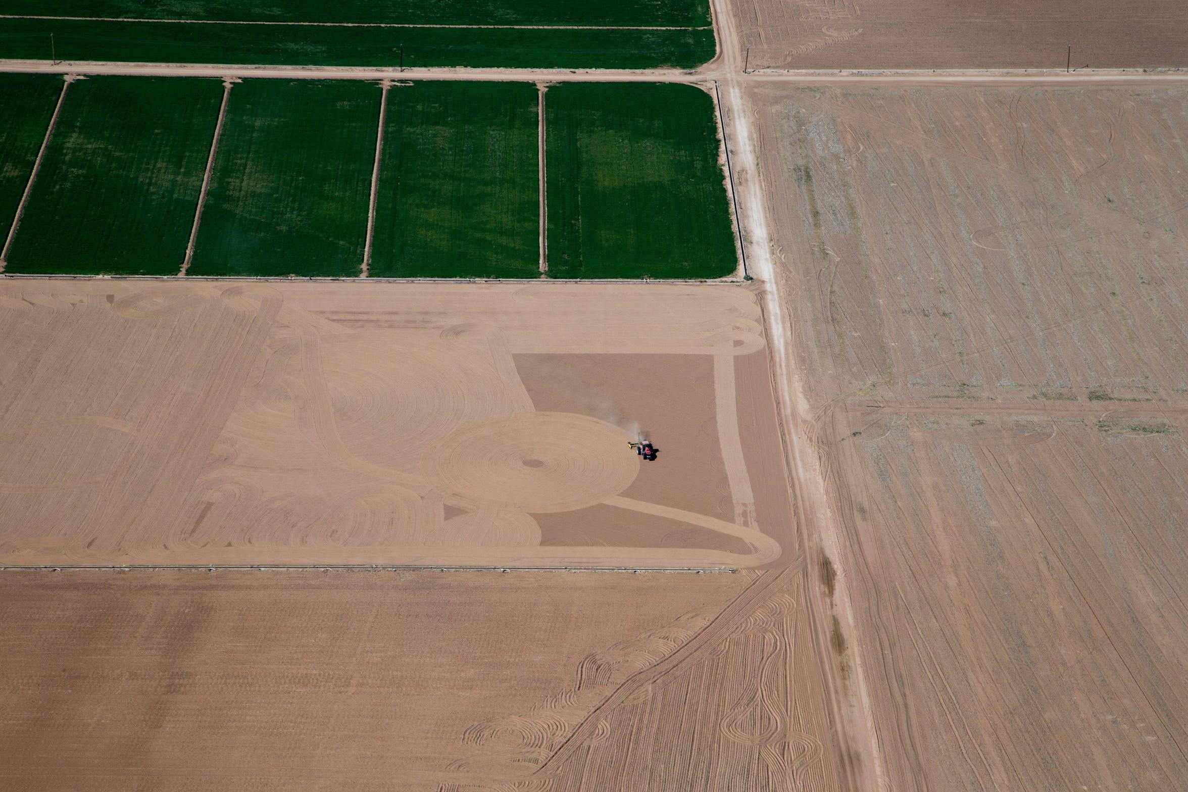 Terrenos agrícolas cerca del área de restauración de la Colonia Miguel Alemán en Baja California, México.
