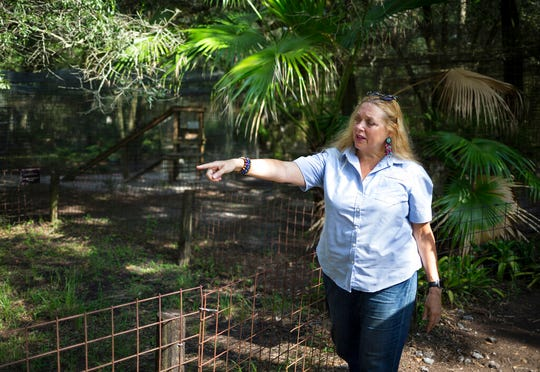 In this July 20, 2017 file photo, Carole Baskin, founder of Big Cat Rescue, walks the property near Tampa, Fla.