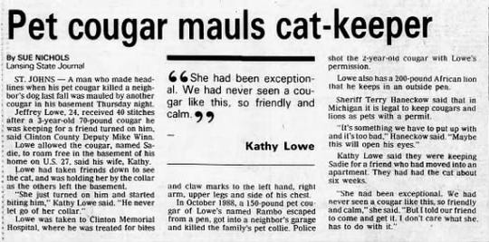 This article from Aug. 12, 1989 chronicles how a cougar mauled Jeff Lowe while he was watching it for a friend.
