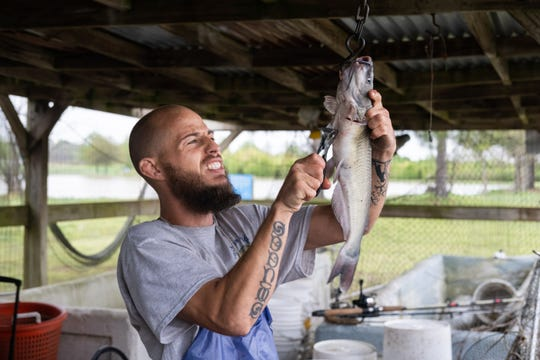 Kevin Glona clips the fins off a catfish at Catchem' Lake, Monday, Mar. 30, 2020, in Memphis, TN.
