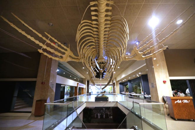 The Milwaukee Public Museum sits empty in Milwaukee on Monday, March 30, 2020. The museum will reopen to the public Aug. 21.