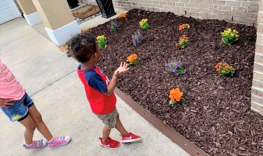 Wraylon Simmons learns about botany by observing the flowers planted outside his home during a homeschooling lesson.