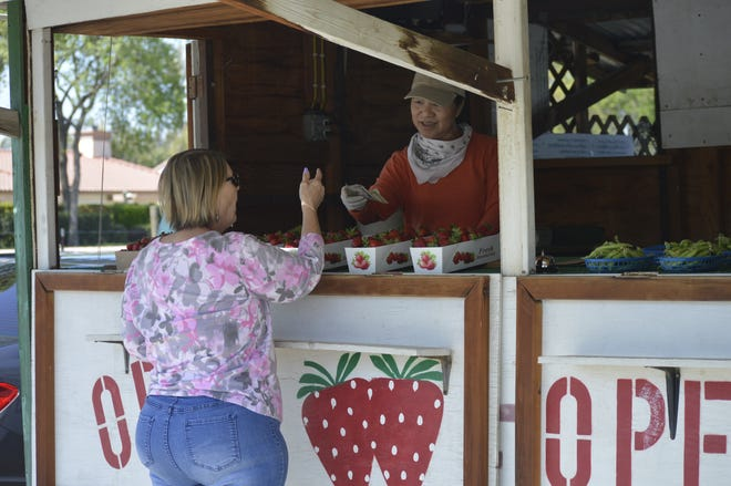 Koy Saechao, owner of the fruit and vegetable stand on the northeast corner of Ferguson Avenue and Akers Street, helps a customer on March 31, 2020 in Visalia.