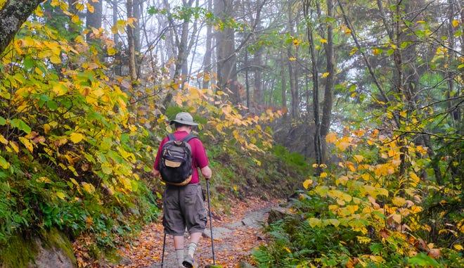 Outdoor groups say that although hiking is safe, you should do so alone or with people you live with.