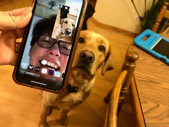 Menomonee Falls North Middle School teacher, Denise Moen, is doing a virtual dog comfort session with Walle. During the coronavirus pandemic, middle school teacher and Dug's owner, Julie Poetzel, offers virtual comfort dog sessions.