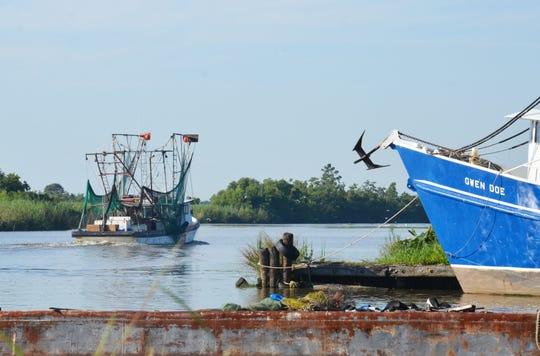 A shrimp boat leaves Intracoastal City, Louisiana. Inshore season usually opens in mid-May, and shrimpers are worried they will have difficulty selling their catch because of the slowdown in seafood purchases by restaurants and seafood dealers because of COVID-19.