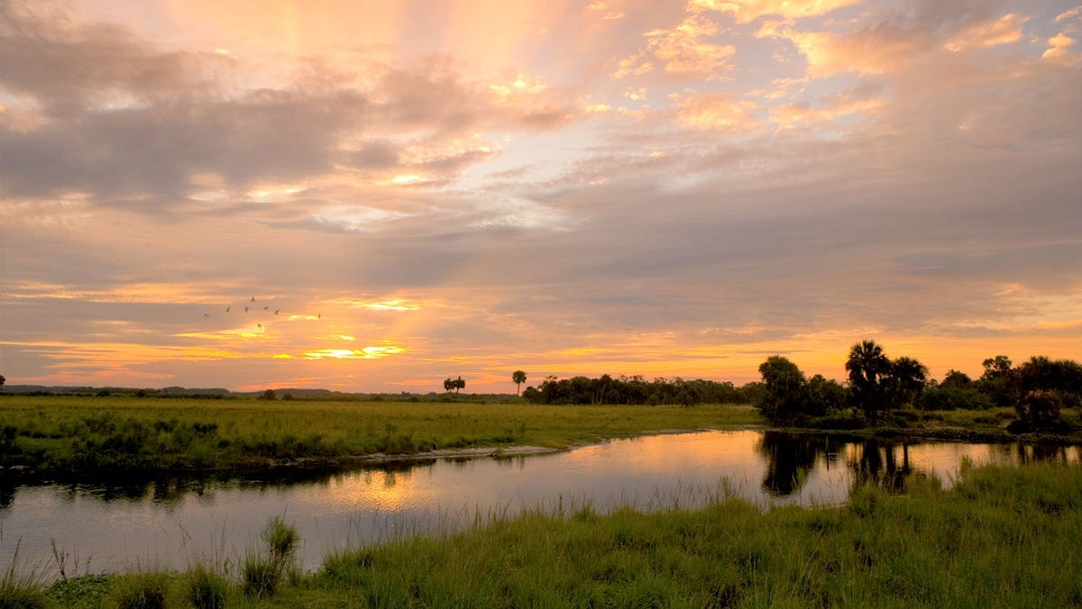 Guest opinion: Working together to protect Collier County's environment 1