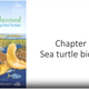 """One in a Thousand: Those Amazing Sea Turtles"" introduces viewers to sea turtle biology, habitat and ways people can help protect sea turtles and their habitat."