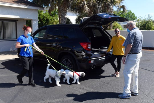 """Veterinary technician Alexis Jackson walks Abby and Jethro back to the car as Deb Guy, of Vero Beach, talks with veterinarian Dr. Dan Clifton on Wednesday, April 1, 2020, during a curbside consultation at Dr. Dan's Animal Hospital in Vero Beach.  """"I'm just glad that they are still open for business,"""" said Guy, who has been a patron of Dr. Dan's for about three years. """"This is a wonderful service to our community and our pets and the staff here is so good."""""""