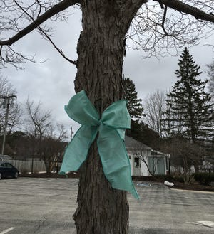 "Two Door County couples are asking residents to ""Thank Them"" by tying ribbons of any color around trees and poles, like this one at 611 Jefferson St. in Sturgeon Bay, or taping paper hearts in visible places to show appreciation for all service workers during the COVID-19 crisis."
