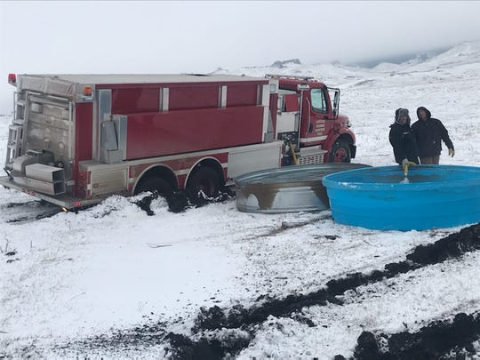 North 40 Outfitters and Western Ranch Supply each donated 1000-gallon water troughs to assist cattle found starving west of Cascade, and the Cascade Fire Department has been filling them up.