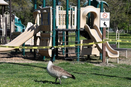 Tulare County Parks remain open during regular hours and are not charging admission at the gates as of Thursday, April 2, 2020. However, Mooney Grove Park will be closed over Easter weekend, one of its busiest weekends of the year, in response to the COVID-19 pandemic. Tulare County Museum is closed, and all reservations at the park through April have been canceled. Playgrounds have also been blocked off with caution tape.