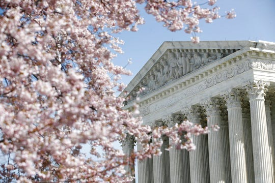 In this March 16, 2020 photo, a tree blooms outside the Supreme Court in Washington, Monday, March 16, 2020.