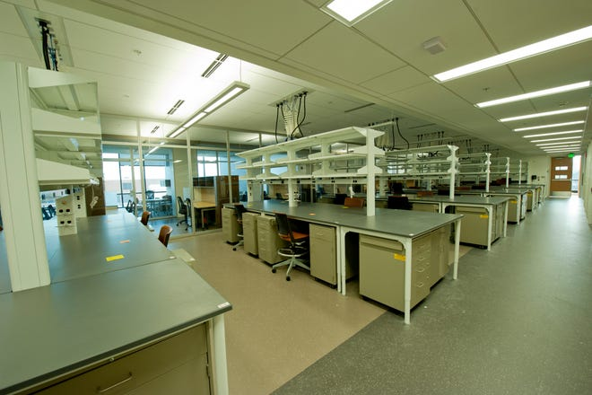The spread of COVID-19 brought research restrictions, keeping Michigan State University researchers from their labs, like this lab photographed previously in MSU's Molecular Plant Science Building.