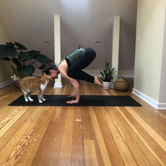 MelanieLandgraf's cat often makes an appearance on camera during the virtual yoga classes.