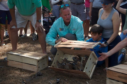 Brian Beckner, owner of Native Bird Boxes, guides Oliver Pohlmann, 6, and mom Vania Pohlmann, through the process of releasing bobwhite quail into Quail Creek Country Club in North Naples as residents gather to watch the reintroduction of the native species on Tuesday, March 17, 2020.