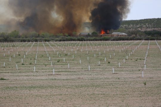 A brush fire rages through the bosque adjacent to the Rio Grande near Mesilla on Friday April 3, 2020.